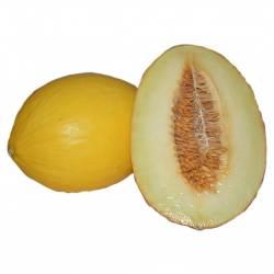 Melón amarillo 2,5 Kg