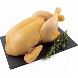 Pollo Entero de Corral