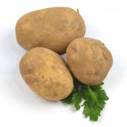 Patata Agria, para Freir....