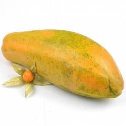 Papayón