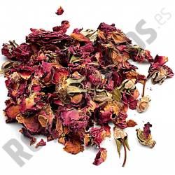 Rosas Pétalos