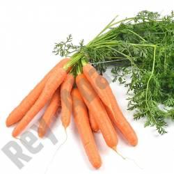 Zanahorias Frescas Manojo 1...