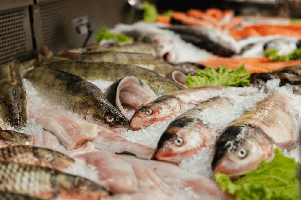 comprar-pescado-mercado-el-carmen